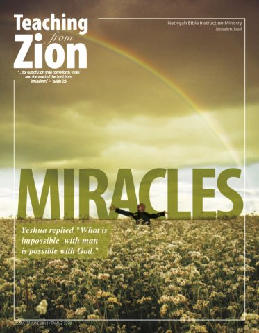 teaching-from-zion-37