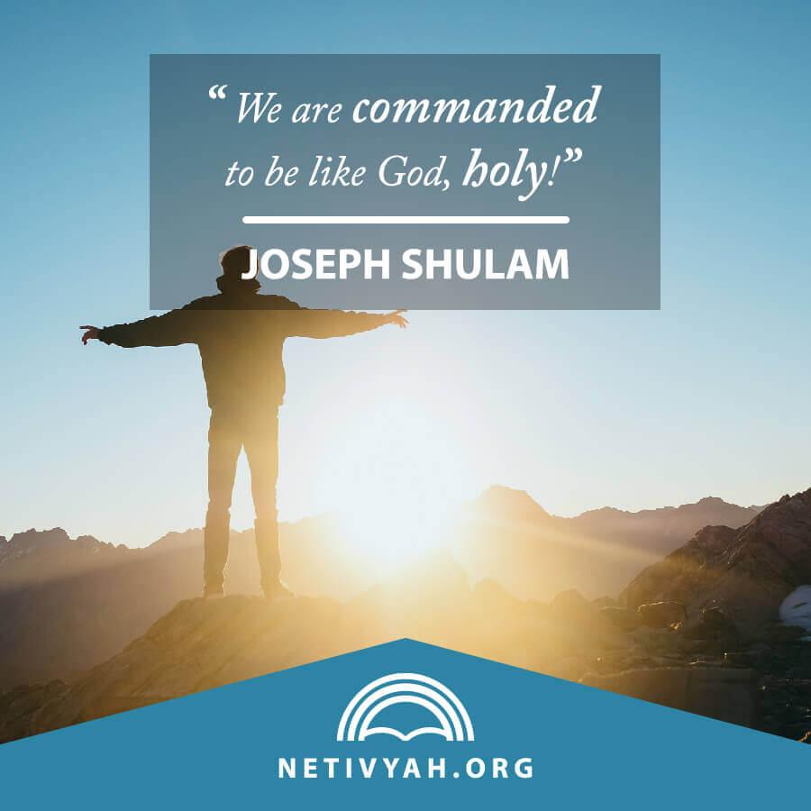 joseph-shulam-netivyah